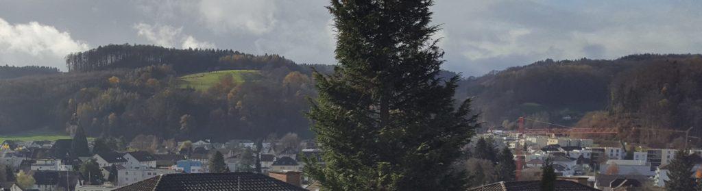 Panorama Gränichen
